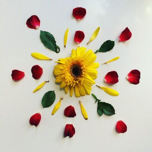 2016 flower art 234